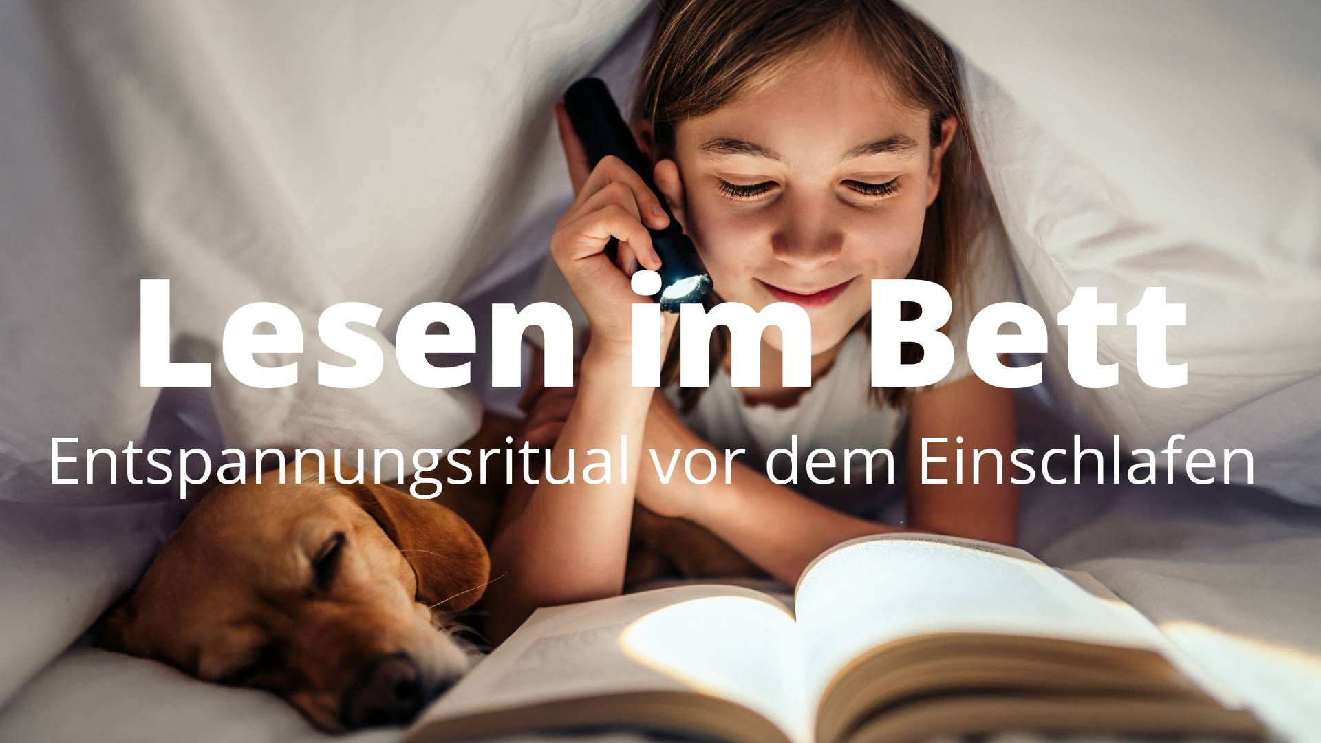 Lesen im Bett