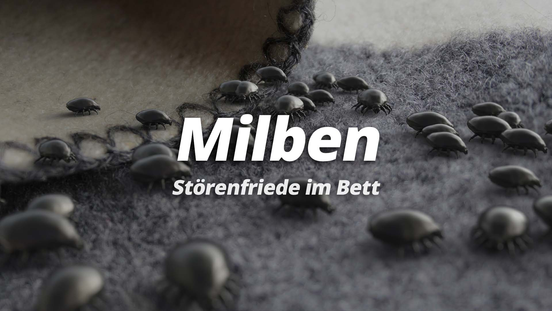 milben-stoerenfriede-im-bett
